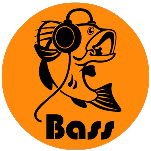BASS International Sp. z o.o. Sp. k.
